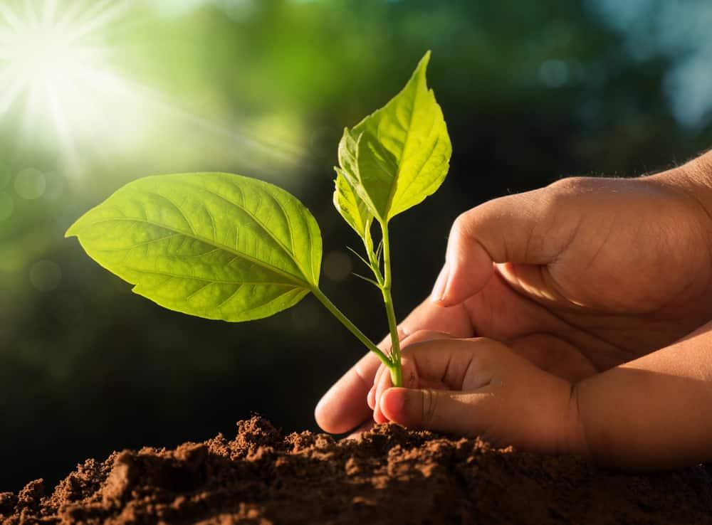 health benefits of earthing